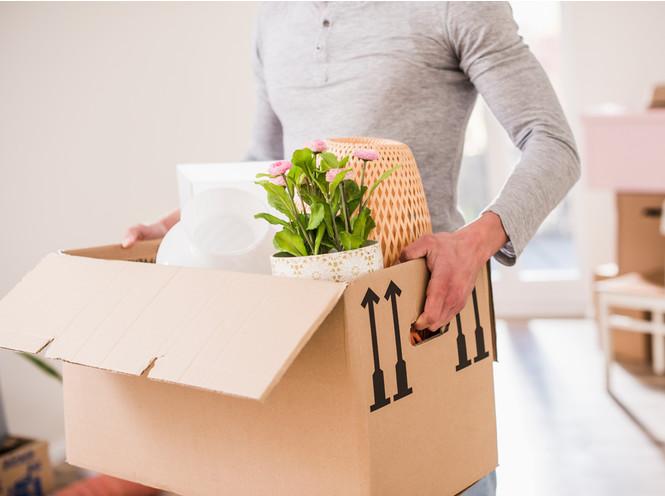 Правильная упаковка – залог переезда без потери вещей