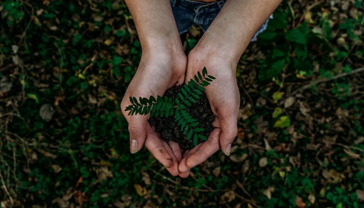 Правильная утилизация мусора – залог хорошей экологии
