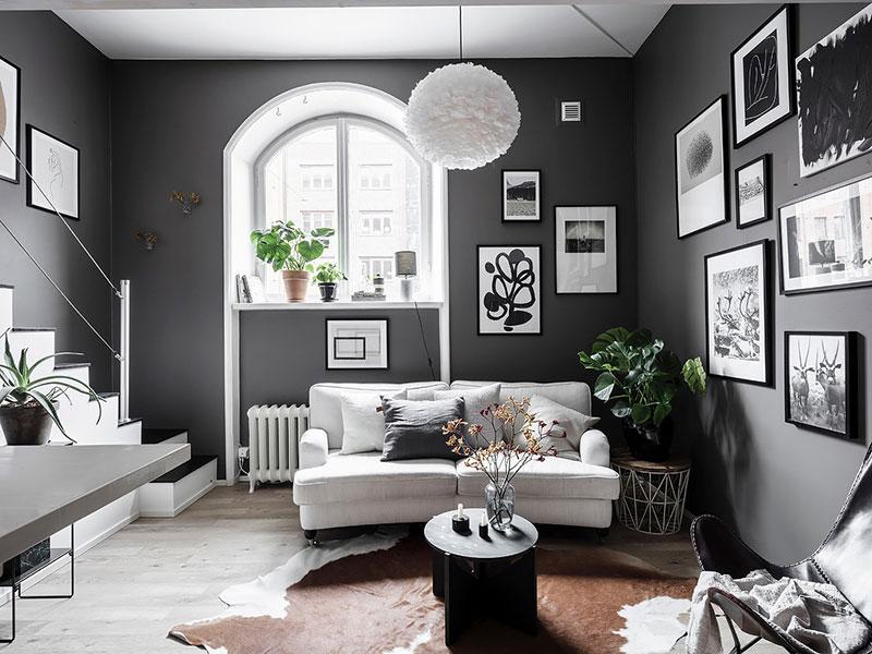 Живые растения в интерьере комнаты
